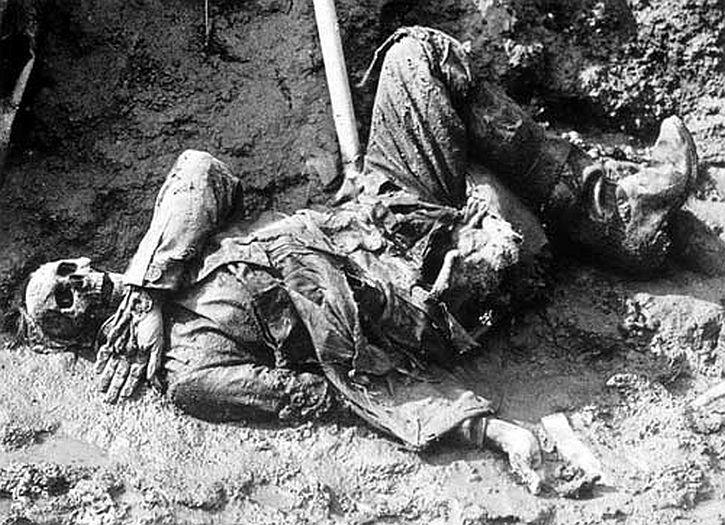 War dead