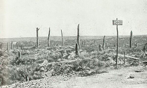 The site of Hooge battlefield in 1919