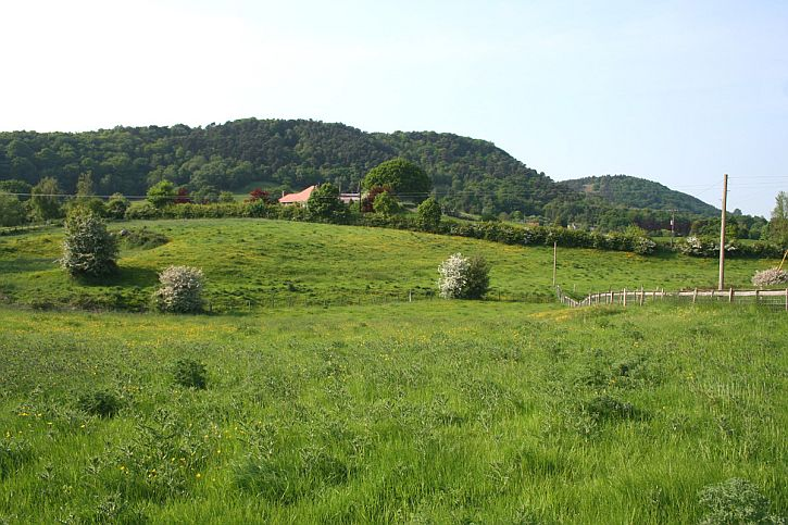 Bulkeley Hill (Wikipedia)