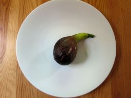 First fig: 'every fruit has its secret'