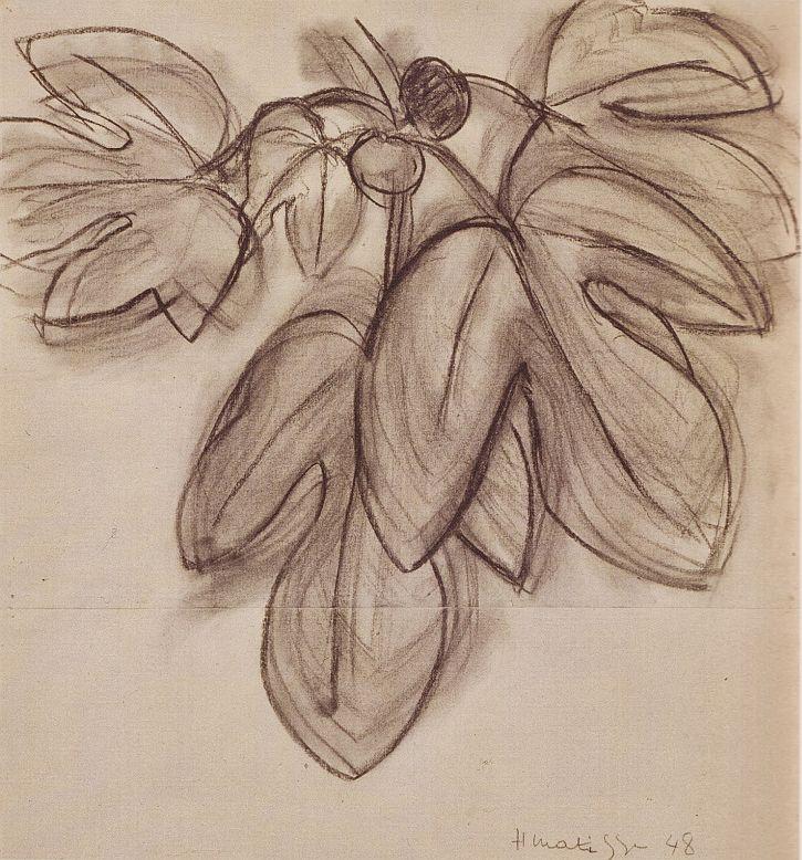 Matisse, FigLeaves, 1948