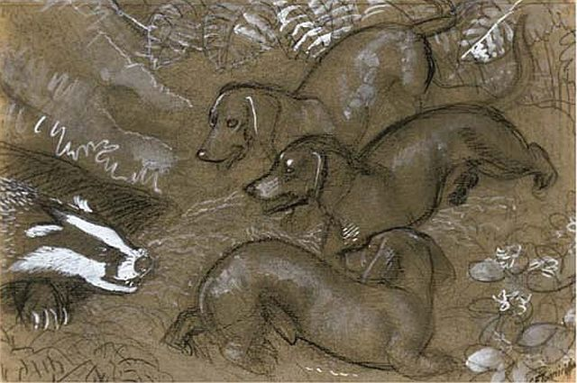 CF Tunnicliffe, A Badger with Three Dachsunds