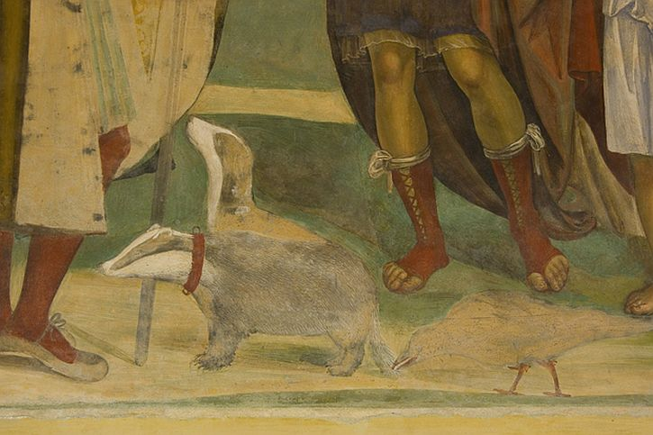 Detail of Sodoma's 'Life of St Benedict' (1505), showing an unusual example of badgers as pets