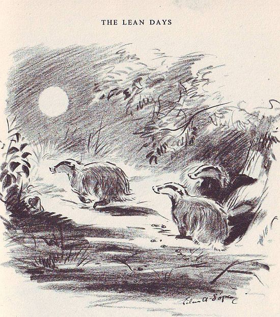 Soper When Badgers Wake The Lean Days