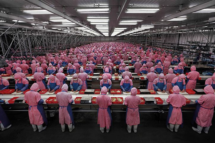 """Manufacturing #17"", Deda Chicken Processing Plant, Dehui City,"