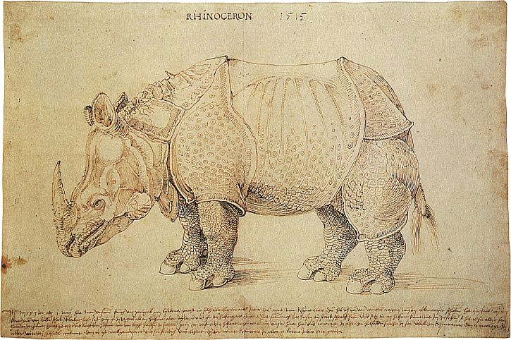Pen and ink drawing of the rhinoceros, by Albrecht Dürer, 1515