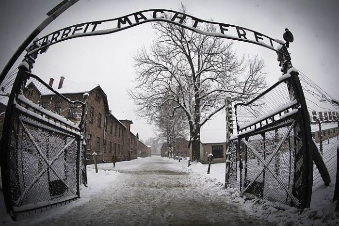 Auschwitz: there was no whythere