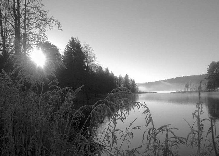Finnskogen 2