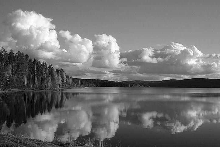 Finnskogen 3