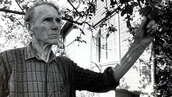 Olav Håkonson Hauge