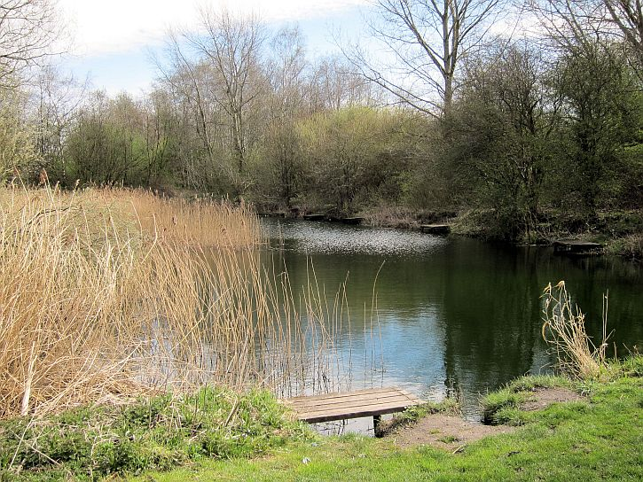 Broad Oak Basin fishing ponds