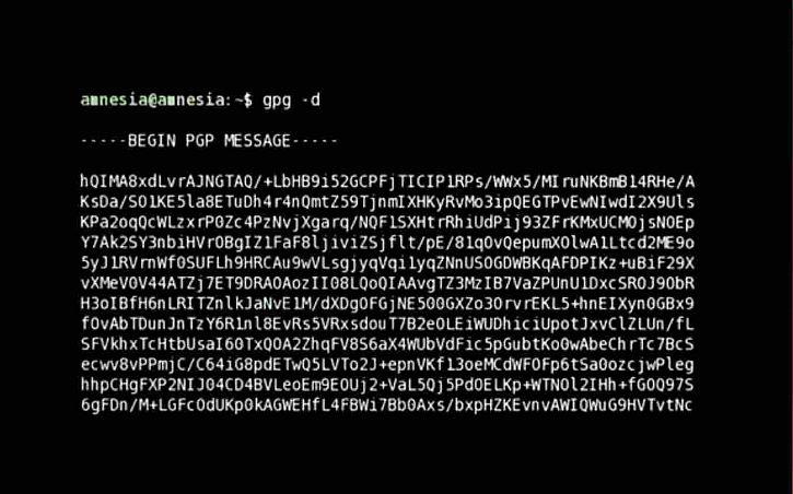 Citizenfour: encrypted communication