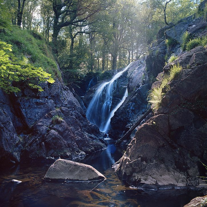Rhaeadr from Uncommon Ground