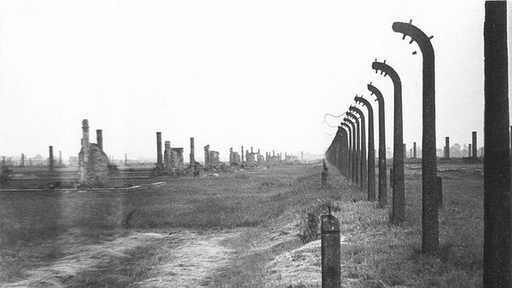 Ruins of part of the electric fence at Auschwitz-Birkenau