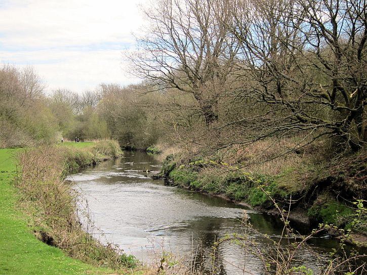 Sankey Valley 6
