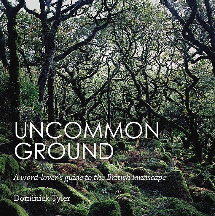 Uncommon Ground cover