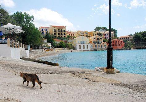 Assos harbour