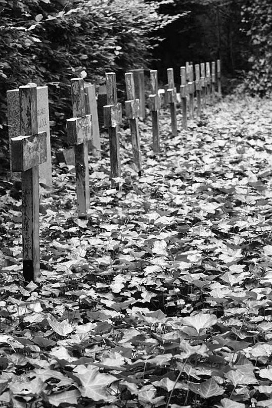 A mass grave for people, many of them unknown, who died during the last days of the Second World War