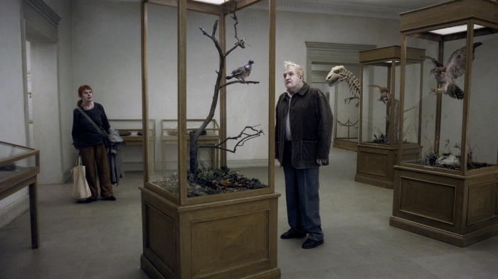 A Pigeon Sat on a Branch Reflecting onExistence