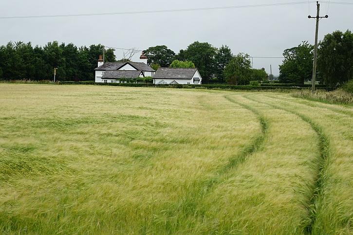 Lancashire flatlands 1