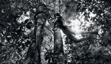 Genesis: Zo'é Indian hunter, Brazil, 2009