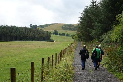 Llanarmon walk 5