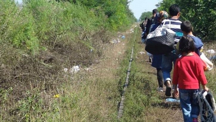 Refugees walk down the tracks towards Hungary
