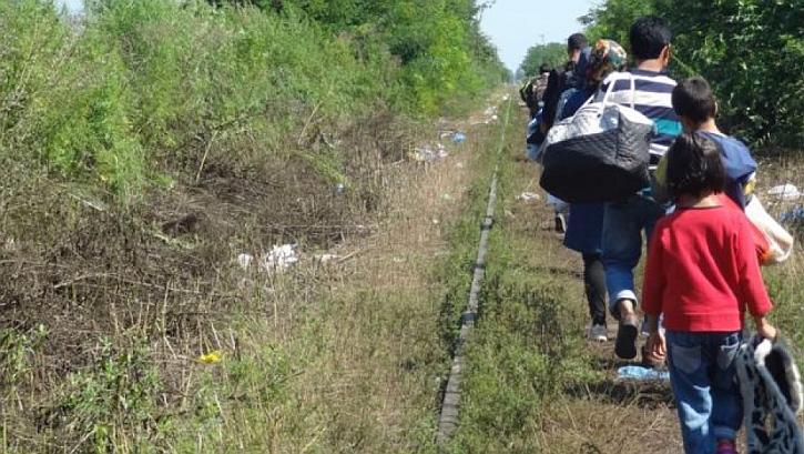 Refugees walk down the tracks towards Hungary