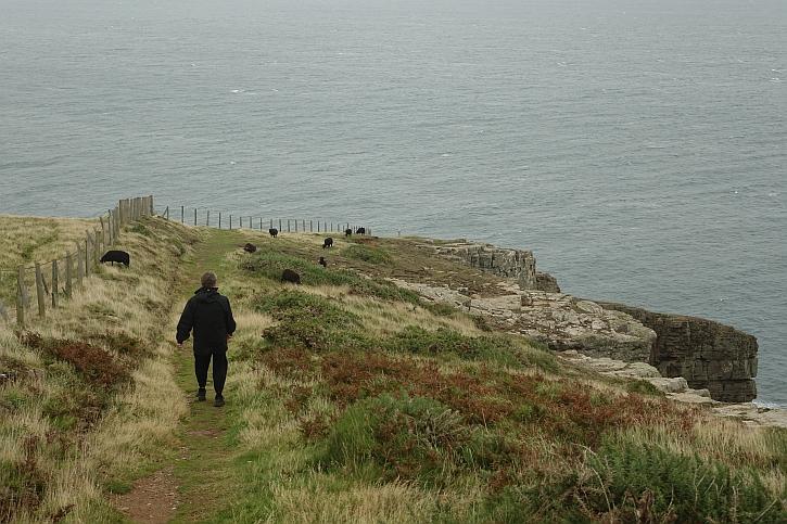 The cliff at Trwyn Llech-y-doll
