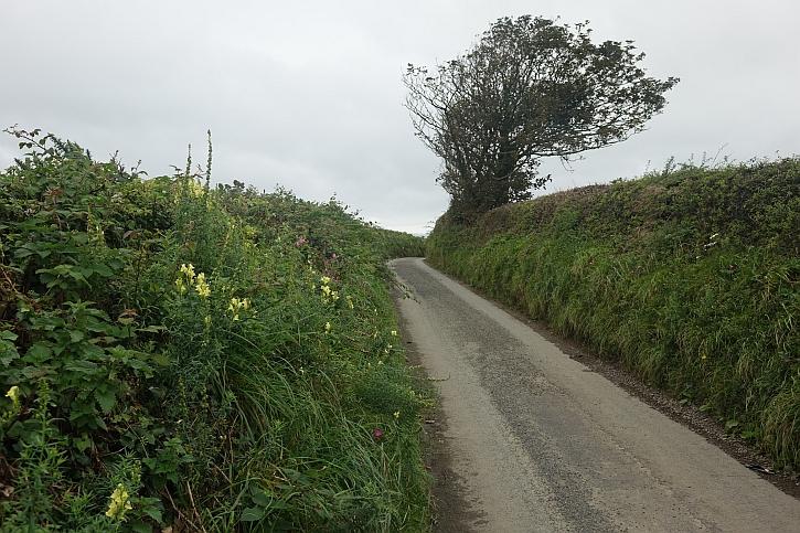 Around Mynydd Cilan 18