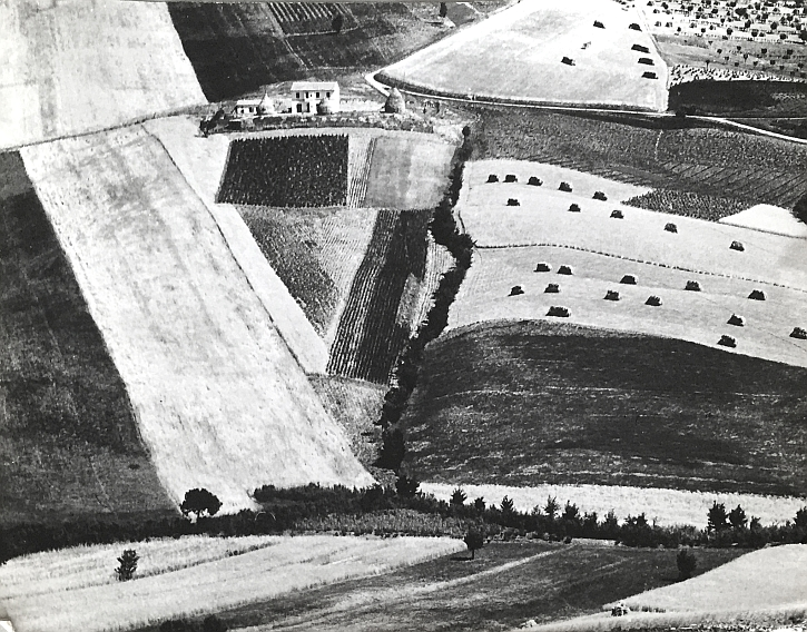 Mario Giacomelli, Luglio (July) Landscape Overview of Fields, 1955-56