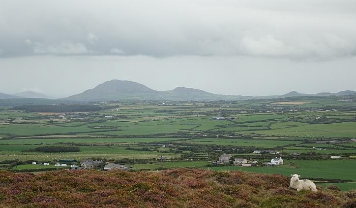 Lleyn walks: wind and rain on MynyddAnelog