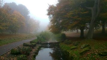 Mist in Sefton Park 7