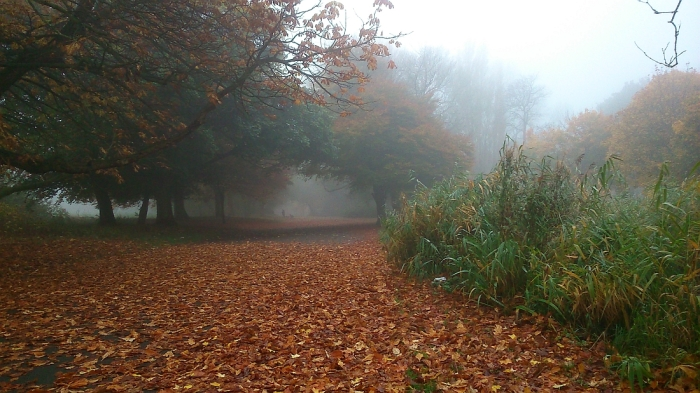 Autumn 2015: mist, colour and unnatural warmth