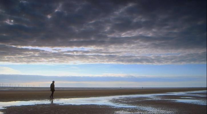 Simon Schama on Crosby beach