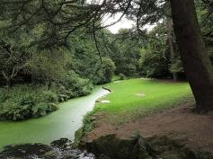 Sefton Park Fairy Glen