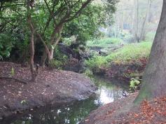 Upper Brook 3