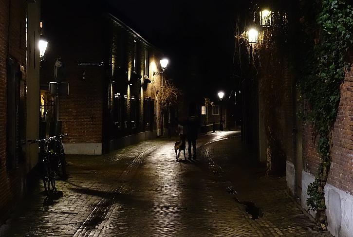 Hertogenbosch night