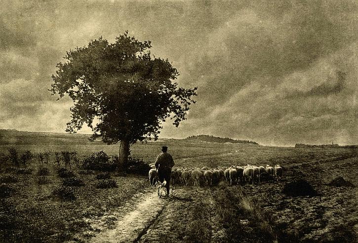 Adriaan Boer, Towards the fold, 1905