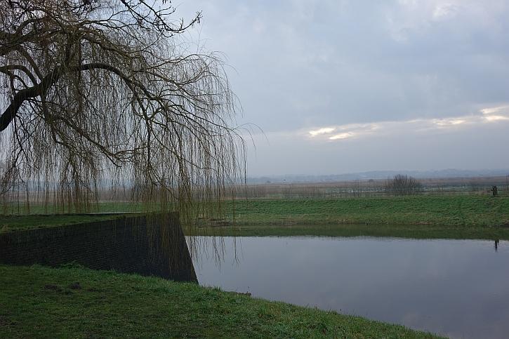 Hertogenbosch 4
