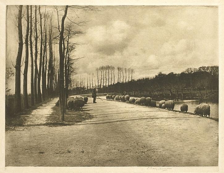 James Craig Annan, A Utrecht Pastorale, 1892