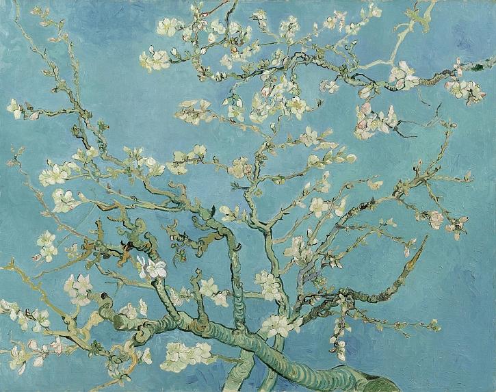 Van Gogh, Almond Blossom