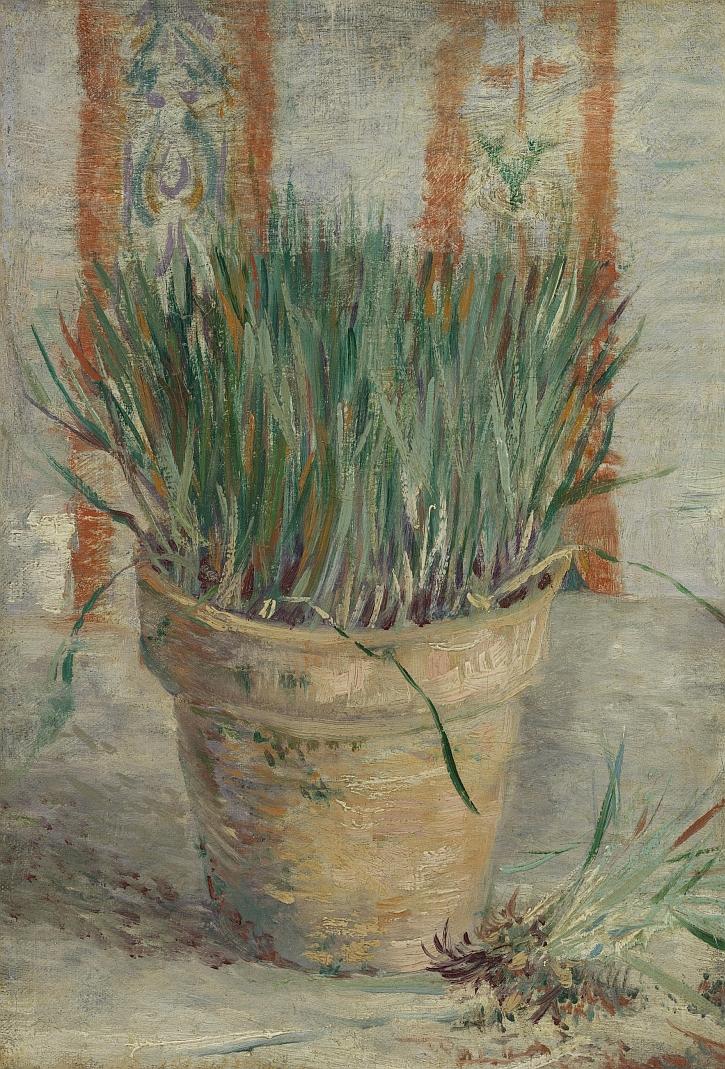 Vincent van Gogh, Flowerpot with Garlic Chives, 1887