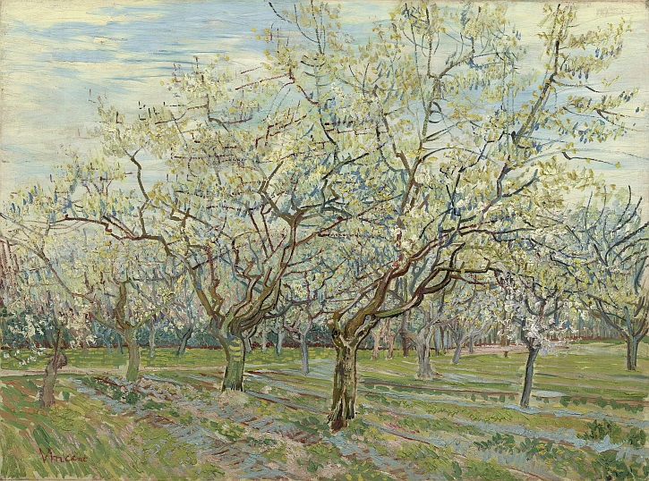 Vincent van Gogh, The White Orchard, 1888