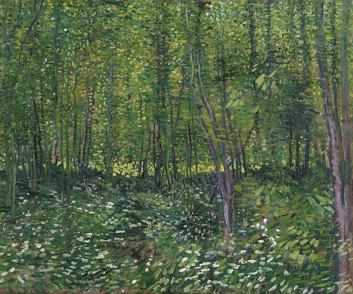 Vincent van Gogh, Trees and Undergrowth, 1887