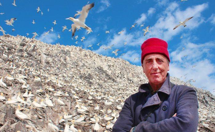 Adam Nicolson, the Shiant Isles and the crisis in seabirdpopulations