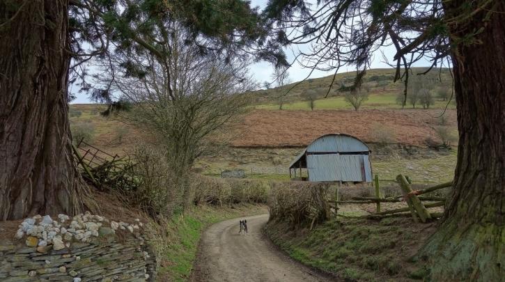 Farm in the Edw valley photo wyeexplorer.co.uk