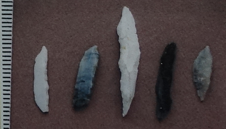 Flint and chert points found at Lunt Meadows
