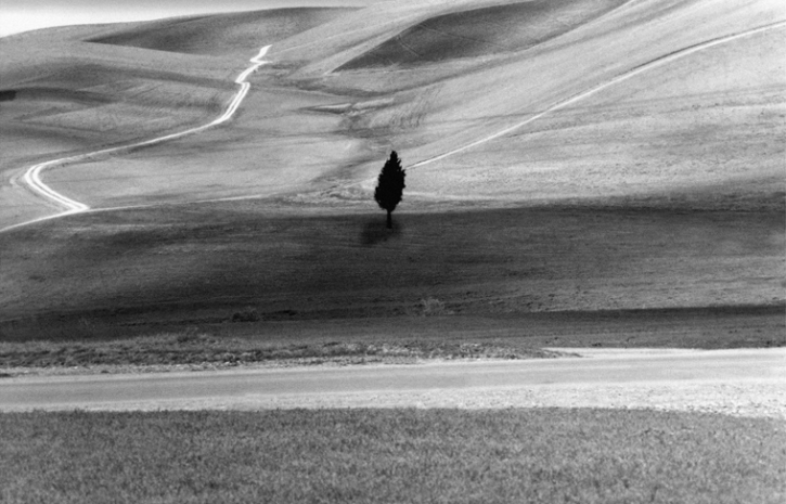 Roads of Kiarostami 2