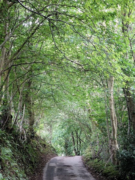 The lane leading to the Capel-y-Ffin monastery